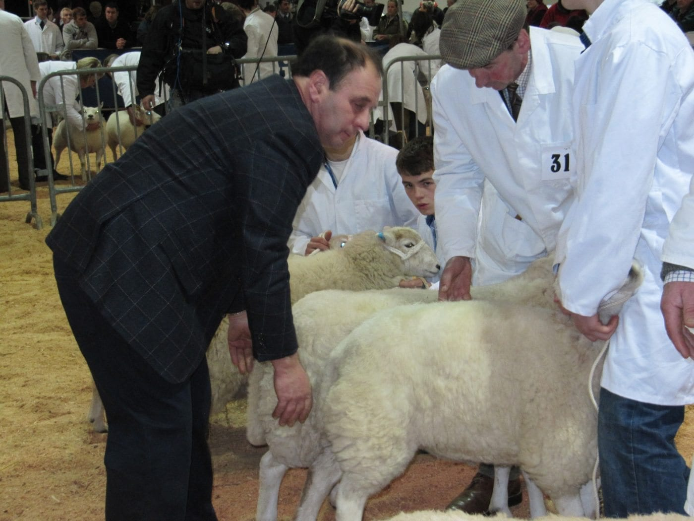 Alwyn judges at Winter Fair