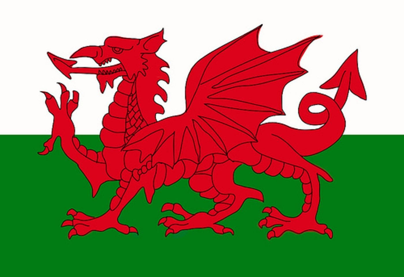 Our Welsh Language Website