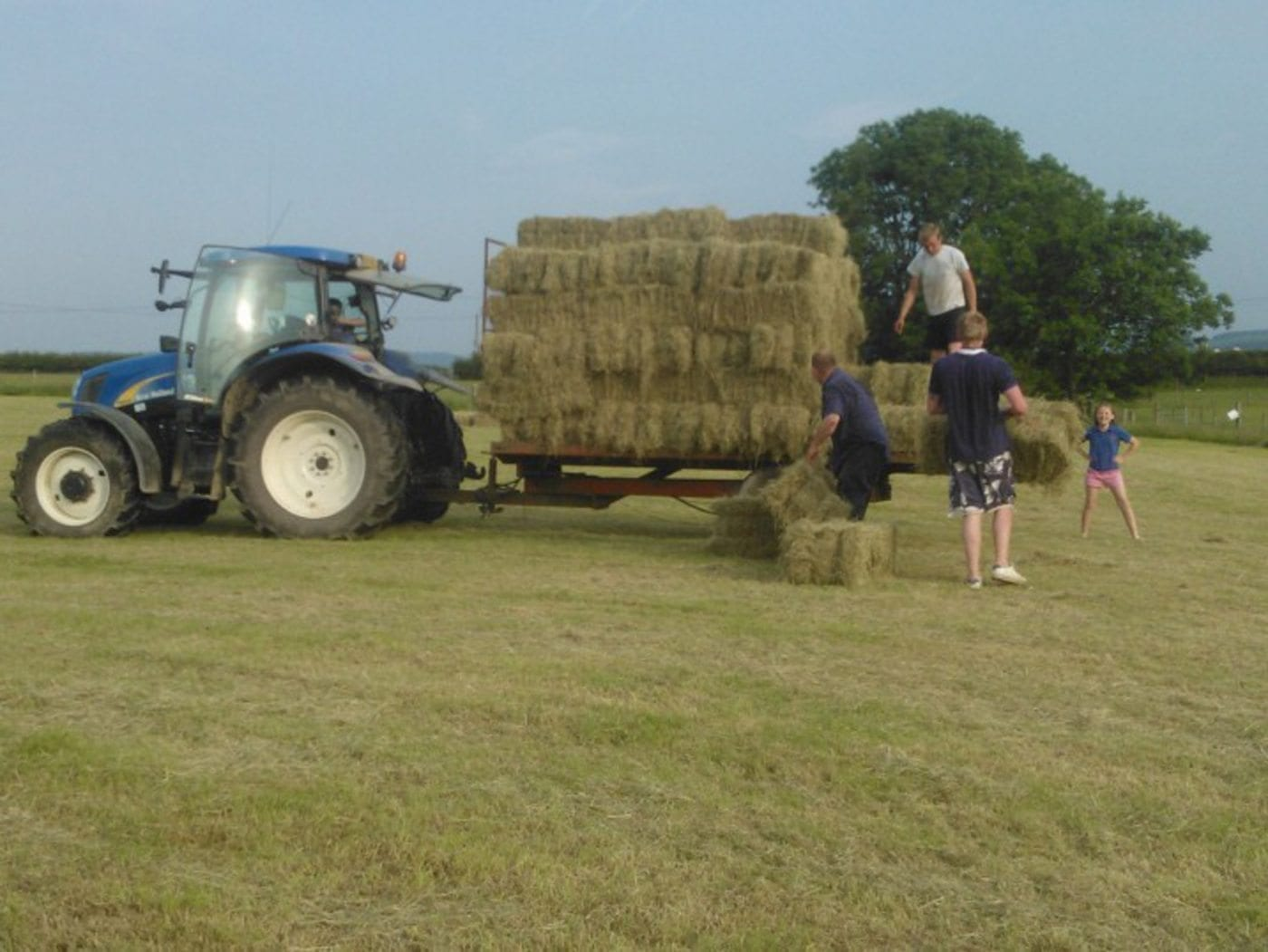 Make hay while the sun shines!