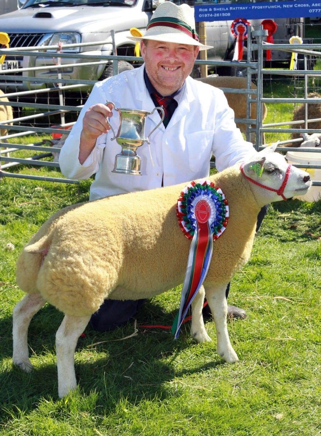Champion of Champions at Llanilar Show