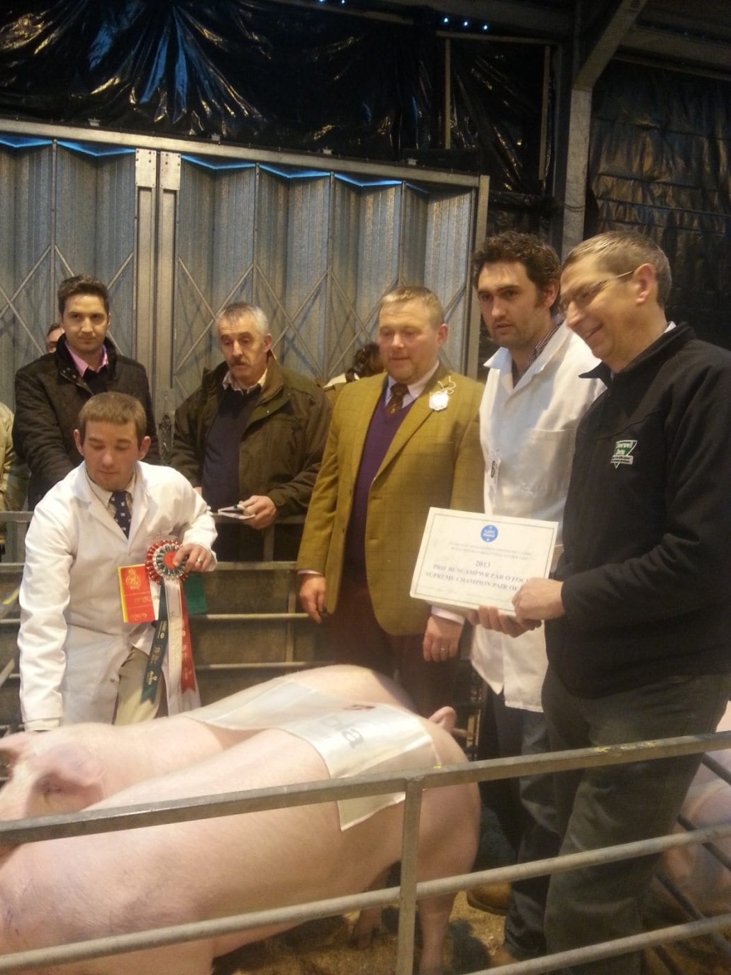 Prime Beef for Christmas from Welsh Winter Fair