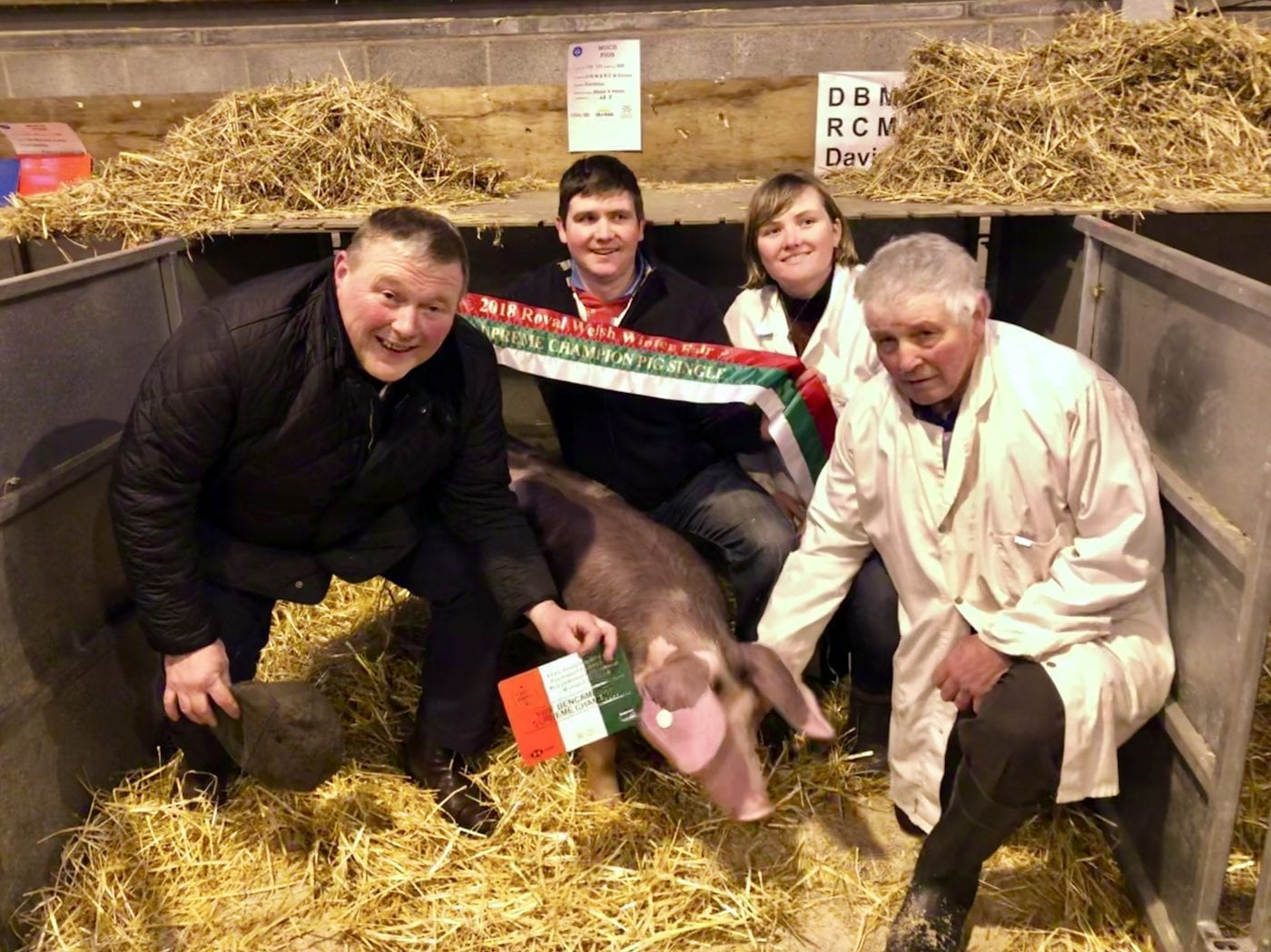 Winter Fair Pig Champions!!